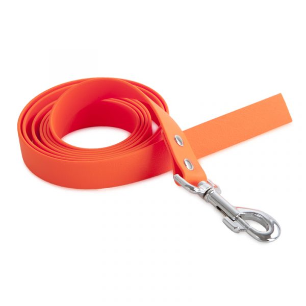 5m dog leash 2