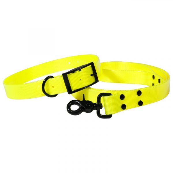 Hunting accessories for the waterproof dog collar and leash