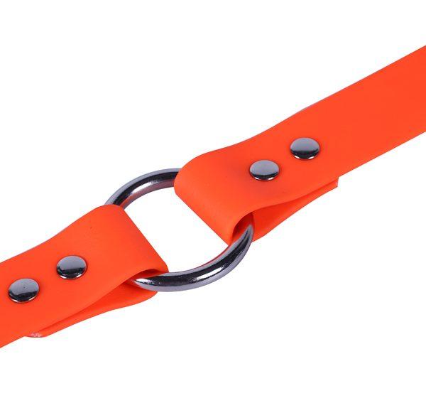 PVC DOG COLLAR (8)