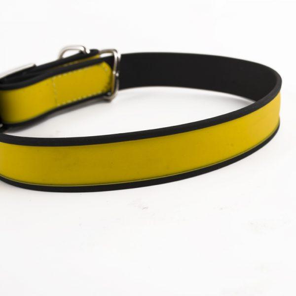 dog chain collar (10)