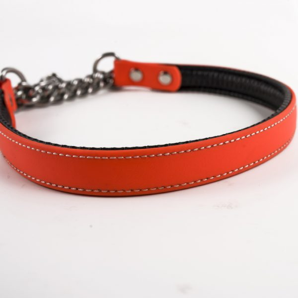 dog chain collar (5)