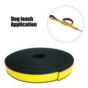 leash 2